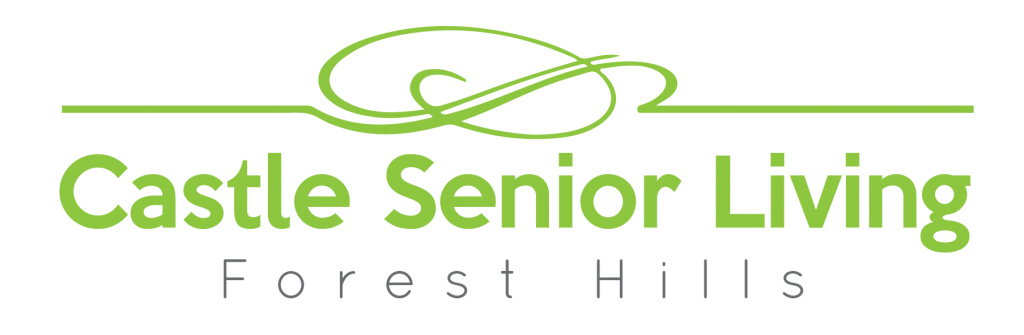 assisted living the bronx senior independent living facility in